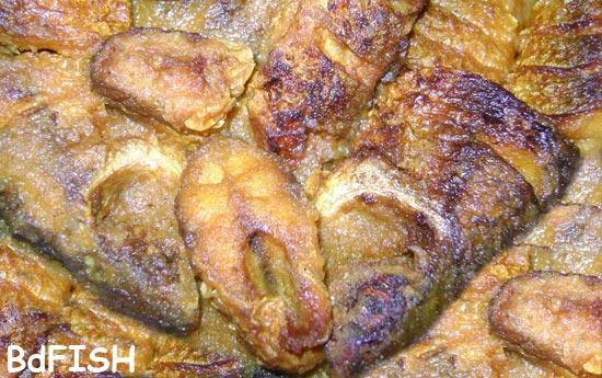 রেসিপি: বাটা মসলায় মাছ