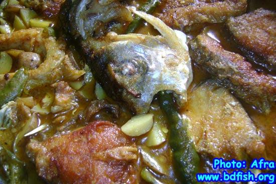 কাতলা মাছ ও আলুর ঝোল