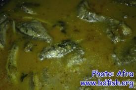 গুচি বাইম ও খলিশা মাছ এবং ধনেপাতার ঝোল