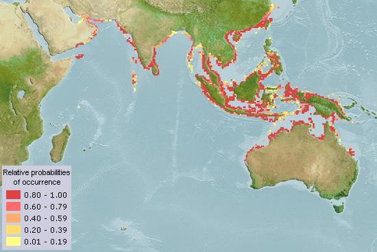 Geographical distribution of Thryssa hamiltonii (Aquamaps, 2013)