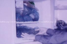 শুটকি মাছ সংরক্ষণ করা যেতে পারে রেফ্রিজারেটরে