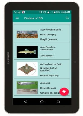 Fishes of BD এর হোমপেজ
