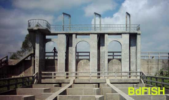 সারিয়াকান্দি ফিসপাসের মূল অবকাঠামোর একাংশ