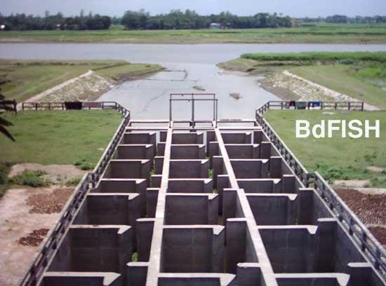 সারিয়াকান্দি ফিসপাসের বাঙ্গালী নদী প্রান্ত