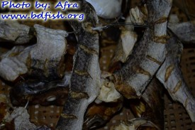 বাড়িতে তৈরি করা ছোট মাছের শুঁটকি